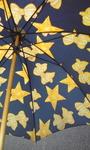 オシャレな傘.jpg
